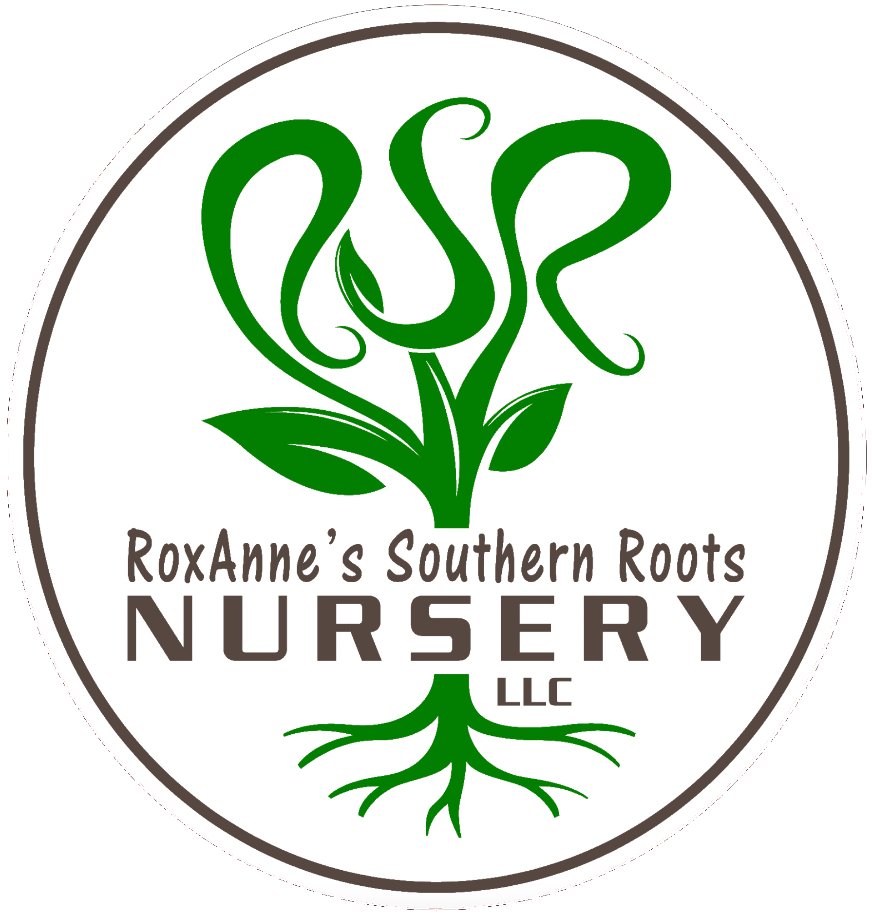 RoxAnne's Southern Roots Nursery
